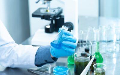 Germany, the #1 coronavirus antibody testing country in Europe